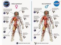 Why Women Make Better Astronauts